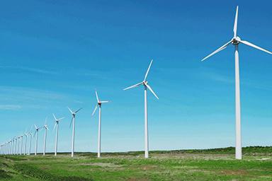 写真:イメージ自然電力販売の「ハチドリ電力」