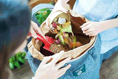 写真:イメージ生ゴミから美味しい野菜をつくろう「LFCコンポスト」
