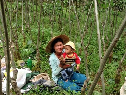 myanmae_farmer