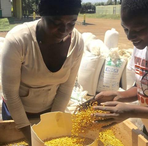 農家の組織づくり(生産)から高品質な農作物の安定供給(卸)までの一貫サービス