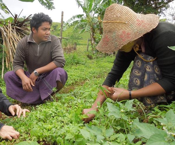 健康的で安定した収入を得られる「つながりのある農業」